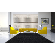 zwart  groot vloerkleed |200 x 300 cm